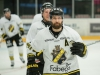 2017-02-27 Tingsryd-AIK LNI6512