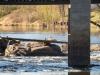 2017-04-23 Kronolaxfisket-Mörrumsån LNI1876