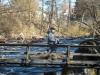 2017-04-23 Kronolaxfisket-Mörrumsån LNI1932