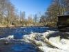 2017-04-23 Kronolaxfisket-Mörrumsån LNI6121