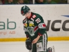 2015-12-02 Tingsryd-AIK LNI1790