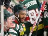 2015-12-02 Tingsryd-AIK LNI2015