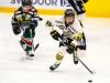 2016-03-01 Tingsryd-AIK LNI3790