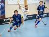 2017-01-29 Växjö-AIK LNI8602